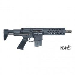 CCS-Gun